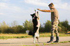 Mann mit Border Collie