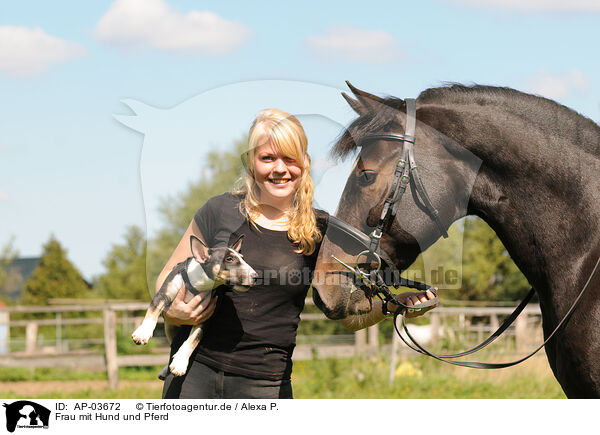 Single frauen mit pferd