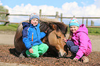 Kinder und Isländer / children and Icelandic horse