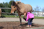 Kind und Isländer / children and Icelandic horse